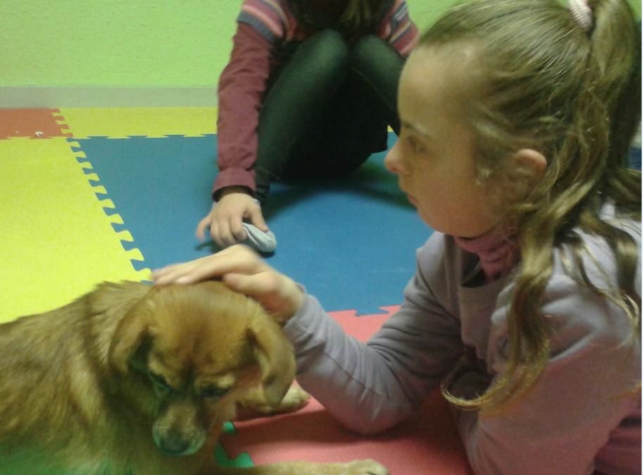 ¡Nueva actividad de terapia con perros!
